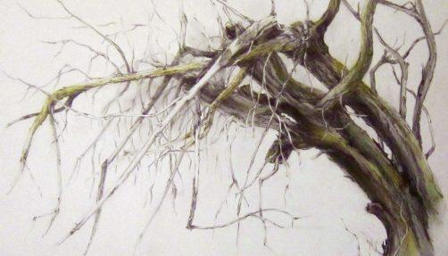 """""""Astgespinst"""", 1998, 57 x 76 cm"""